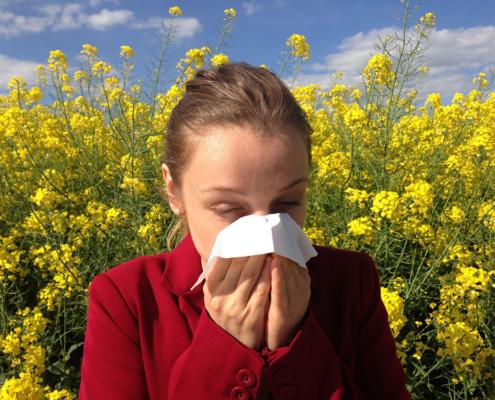 Allergie Pollen Kontaktlinsen
